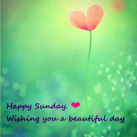 Have a Wonderful Sunday #watchrepair